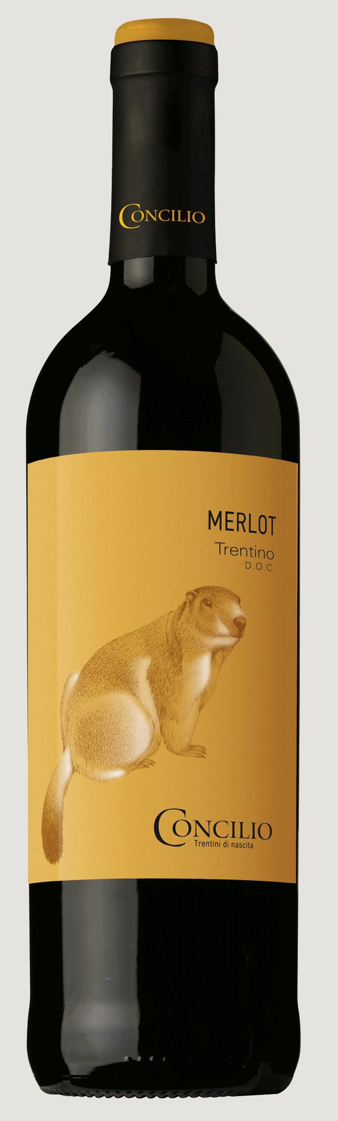 Concilio Merlot Trentino DOP