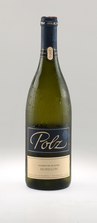 Weingut Polz Morillon Steirische Klassik